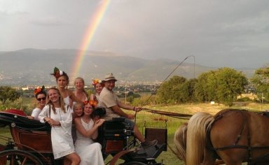 assisi valley, vinyard tour by horse & carriage, with food & wine tasting