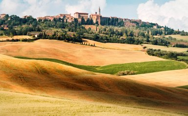 Val d'Orcia bike tour with typical food and wine tasting
