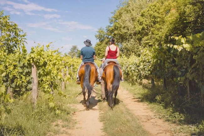 Horseback ride and tuscan pic-nic