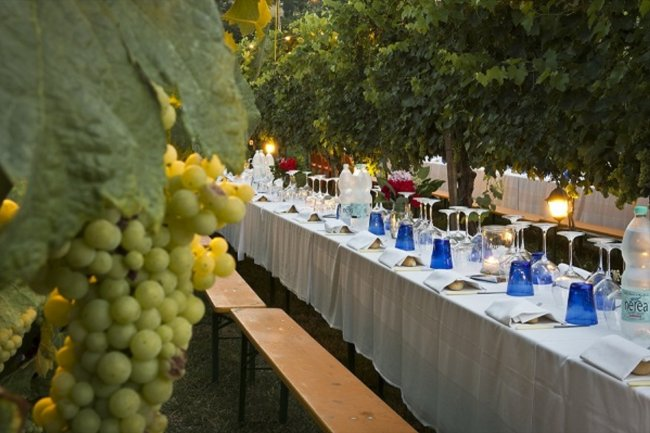 Dinner in the Chianti Vineyards.Experience the ancient farmer's tradition with a dinner in the vineyards